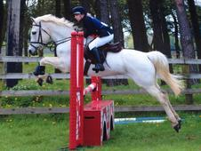 Hunting/all Rounder Pony