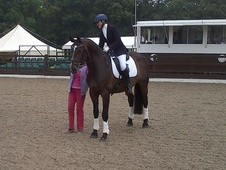 Stunning Family Dressage/showjumper Loan With A View To Purchase