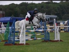 14. 2hh Talented All-rounder