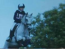 Lovely 13.2hh Pony Club Pony