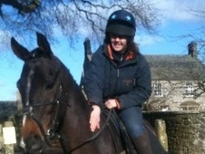 All Rounder horse - 8 yrs 1 mth 16.1 hh Bay - Northumberland