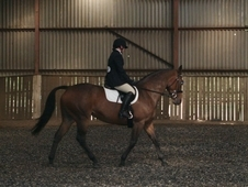 15. 2hh - All Rounder
