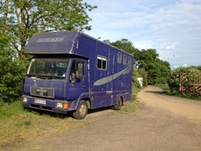 MAN 3 horse lorry for sale