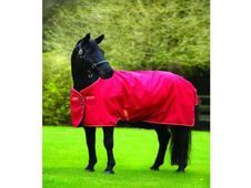 Amigo Hero 6 Lite Turnout Rug. - UK