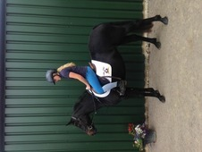 14. 2 Reg **irish** Conemarra Mare