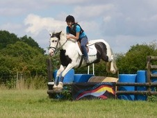 Ideal Allrounder/pc Pony