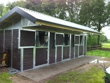 Outdoor stables - East Sussex