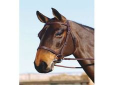 Crosby Hunt Cavesson Bridle wi - UK