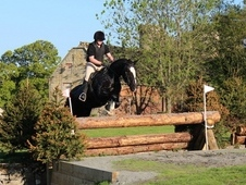 16. 0hh Hunter/maxi cob