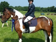 Super Fun 15. 1hh All Rounder