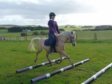 Farchynys Amber Leadrein First Ridden Pony 12. 2 5 Years Palomino