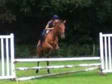 Young Eventing potential