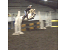 Super Talented Competition Pony/alrounder/showing