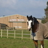 Superb Equestrian Centre + 3 Bed House + 2 Bed Chalet + 60m Indoor