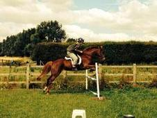 Perfect Allrounder, Loves To Jump