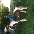 Banner Gype Cob Mare