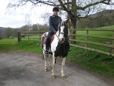 Beautiful 14. 2hh Skewbald Mare