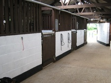 Competition/Full Livery available nr Lutterworth - Leicestershire