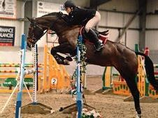 Flashy, Brave Jumping Horse