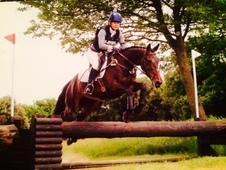 *Perfect Eventer For Sale*