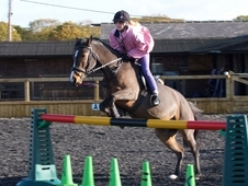 Super Pony Club All Rounder