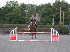 16. 2 Safe And Sane Beautiful Hunter/riding Club / Allrounder