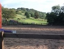 livery yard stables available to rent - Lincolnshire