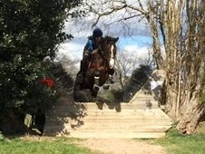 Outstanding Eventer/ Allrounder