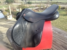 Albion Saddle For Sale
