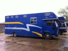 7. 5t Ford Cargo 811 Horsebox