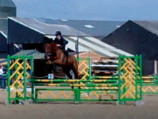 Eventing Show Jumping Dressage