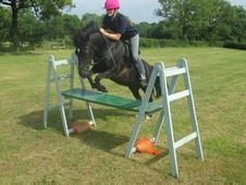 REDUCED to sell-All Rounder Pretty 13. 2 hh Black Mare