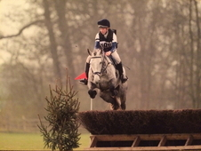 Talented flashy eventer