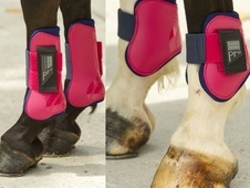Norton Pro Tendon And Fetlock Boots Set - Range Of Colours - Oxfo...
