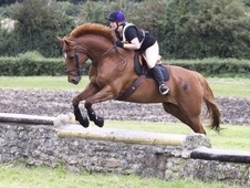 Id X Tb For Loan 16. 3hh