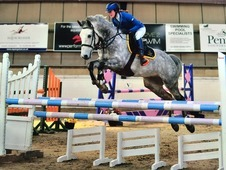 Outstanding PC Schoolmaster/Talented Show Jumper