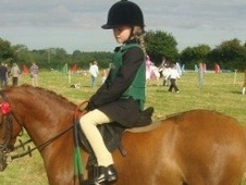All Rounder horse - 12 yrs 1 mth 12.2 hh Chestnut - Kent