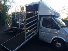 3. 5tn Ford Transit/ifor Williams Horsebox