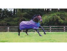 Masta Avante Light Turnout Rug - UK