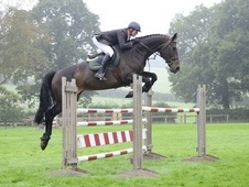A very uncomplicated scopey ride