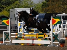 talented, fun competition mare