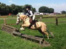 Super Cradles Stakes / Pony Club Pony