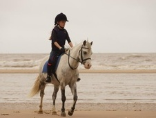 Lead Rein & First Ridden horse - 7 yrs 11 mths 11.3 hh Dapple Gre...