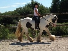 Beautiful Fairytale And Very Safe Cob