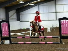 Fantastic 12. 2 LOVING PONY