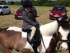 11h2 childrens pony