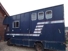 Horsebox, Carries 3 stalls K Reg - Buckinghamshire