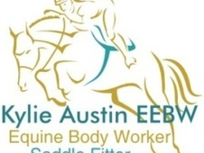 Equine Body Worker & Saddle Fitter - Kent
