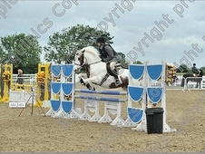 1st/2nd Competition/ Pc Allrounder/ Hunting Pony