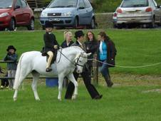 Fantastic 12. 2hh Lead Rein Pony